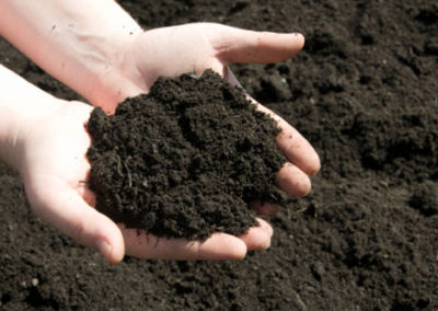 Quality top soil for your garden